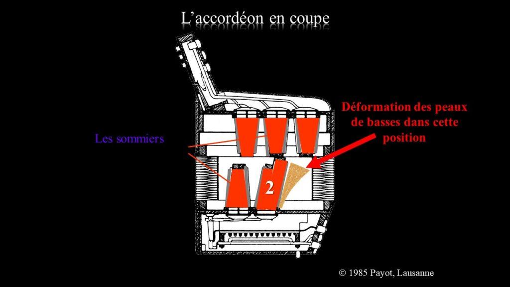 Position des sommiers de l'accordéon